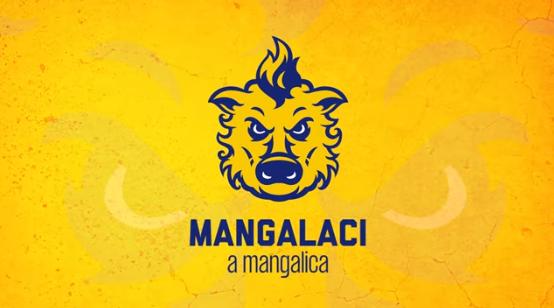 Így fogadták a szurkolók Mangalacit, a mangalicát, a DAC új kabalafiguráját